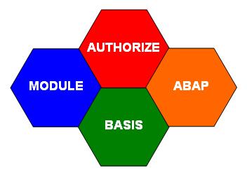 งาน SAP
